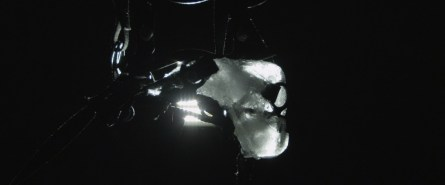 Glaucocamaleo - un film di Luca Trevisani, courtesy Mehdi Chouakri