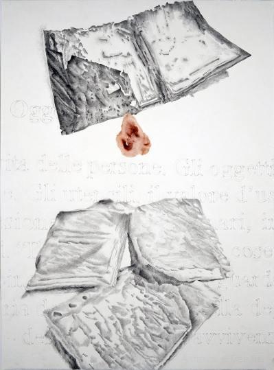 Giovanni Gaggia, Inventarium, Sanguinis suavitas, 2010, sangue e matita su carta cotone