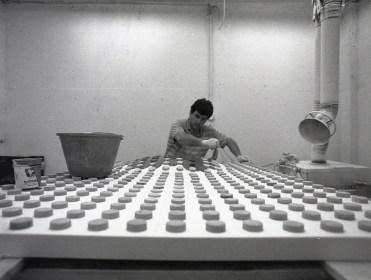 Matteo Negri, ritratto al lavoro in studio Foto G. Tosi