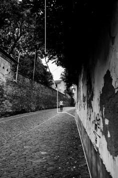 Beatrice Buzzi, Pavia Immaginata, 2014, cm 30x40, Stampa a getto d'inchiostro su carta fotografica MATTE, Via Rotari, Pavia