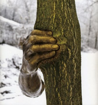 Giuseppe Penone, Continuerà a crescere tranne che in quel punto, 1968-2003 ® Archivio Penone