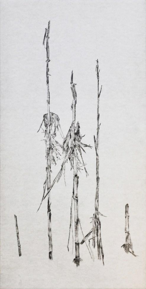 Anne Skole Overgaard, Frumento, 2016, incisione a punta secca, 40x20 cm