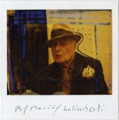 Maurizio Galimberti, Rotella #3, 2005