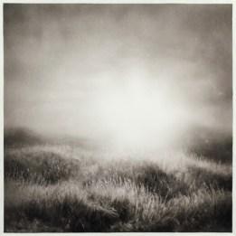 Ettore Frani, Luce che si fa vena, 2017 (9 di 10), olio su tavola laccata, 40x40 cm Foto Paola Feraiorni