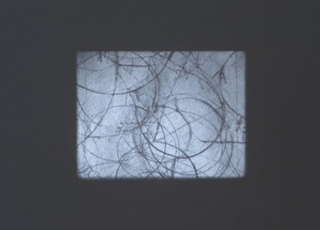 Tacita Dean, Still Life, 2009, 16mm black and white film, mute, 5 1/2 minutes Courtesy of the artist, Marian Goodman Gallery, Paris and New York and Frith Street Gallery, London Photo Poelzl