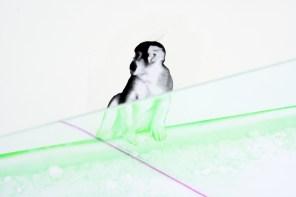 Matteo Negri, Piano Piano Primo, 2017, ferro zincato, cromo liquido, vetro temperato e pellicola, 257x276x160 cm (dettaglio) Courtesy Lorenzelli Arte