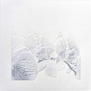 Giorgio Tentolini, Nipponismi (7), 2017, serie di 7, carta pergamena intagliata e sovrapposta a fondale nero, 21x21 cm ciascuna