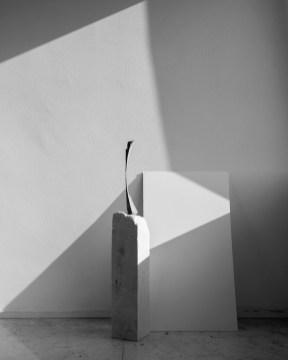 Marco Maria Zanin, Mezzogiorno Locale Vero, 2017, stampa fine art su carta cotone, 60x48 cm