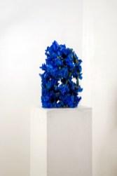 Francesca Romana Pinzari, Deep Blue, 2017, cristalli di solfato di rame su corda Foto Andrea Veneri Courtesy Gilda Contemporary Art, Milano