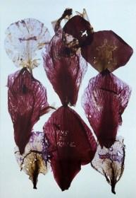 Anne & Patrick Poirier, Serie Archives, 2014, opera unica, stampa Cibachrome su Dibond, 241x151 cm Courtesy Galleria Fumagalli, Milano © Anne & Patrick Poirier Foto Antonio Maniscalco, Milano, 2017