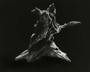 Yamamoto Masao, #3037, Dance E, 2012, stampa ai sali d'argento, incorniciata, 60x71cm