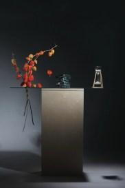 Ilaria Gasparroni, Vanitas. La natura morta, 2017