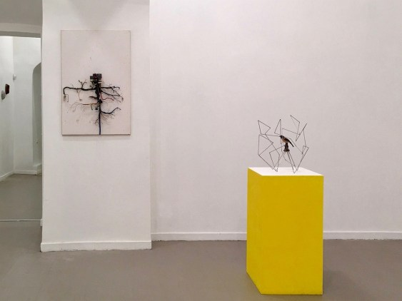 Hidden Beauty, 2017, Installation view, z2o Sara Zanin Gallery, Roma