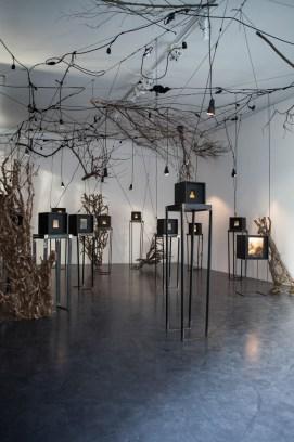Alessandra Calò, Secret Garden, Cubo Gallery, Parma