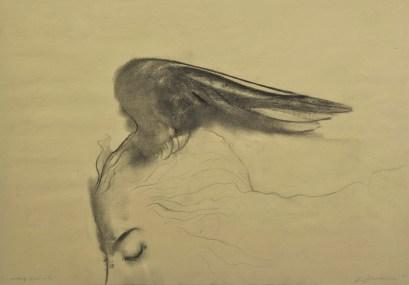 Omar Galliani, Altri voli, 2010, carboncino su carta, cm 150x300