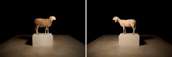 Filippo Berta, Just one, video