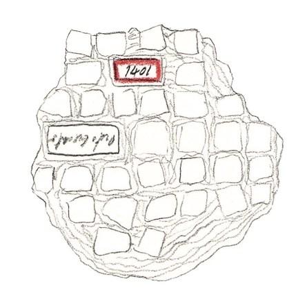 """Alice Padovani, Mosaico, uno dei disegni relativi all'apparato iconografico a """"compendio affettivo"""""""