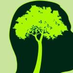 Ecologismul sau responsabilitatea pentru starea mediului