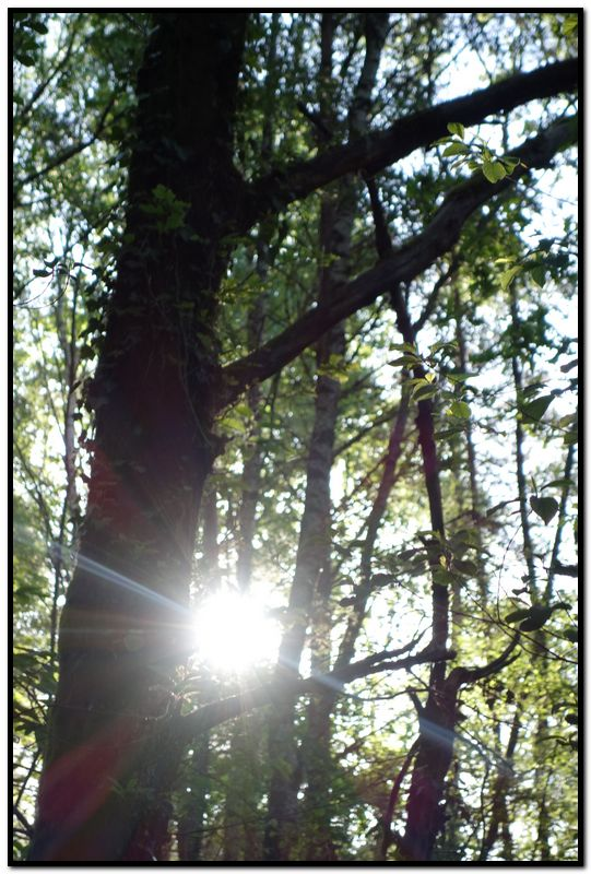 lumière pour guider vers l'autre coté-16-mai-2014_3