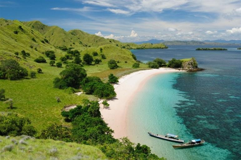 Ile de Komodo - Indonésie