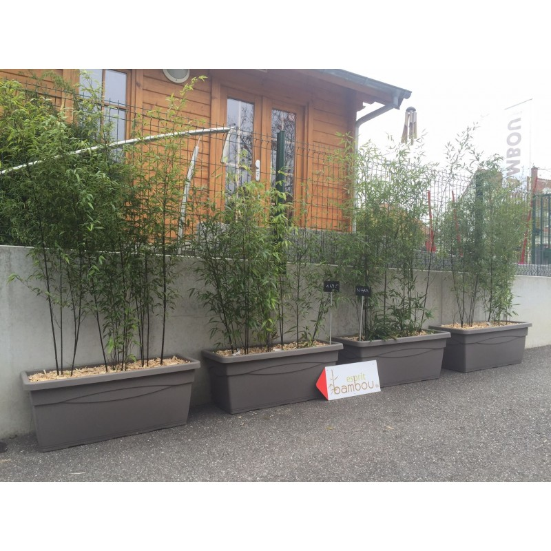 jardiniere pret a poser avec bambous au choix