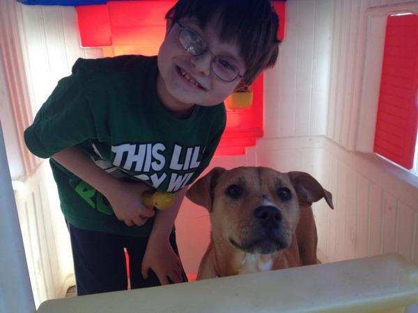 """Résultat de recherche d'images pour """"L'émouvante histoire d'un chien maltraité qui sauve un enfant autiste"""""""
