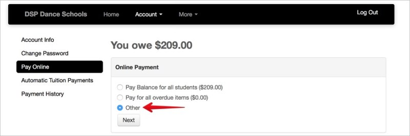 Image of the Payment Screen showing only the Online Payment Options of Pay Balance, Pay for all overdue items, and other.