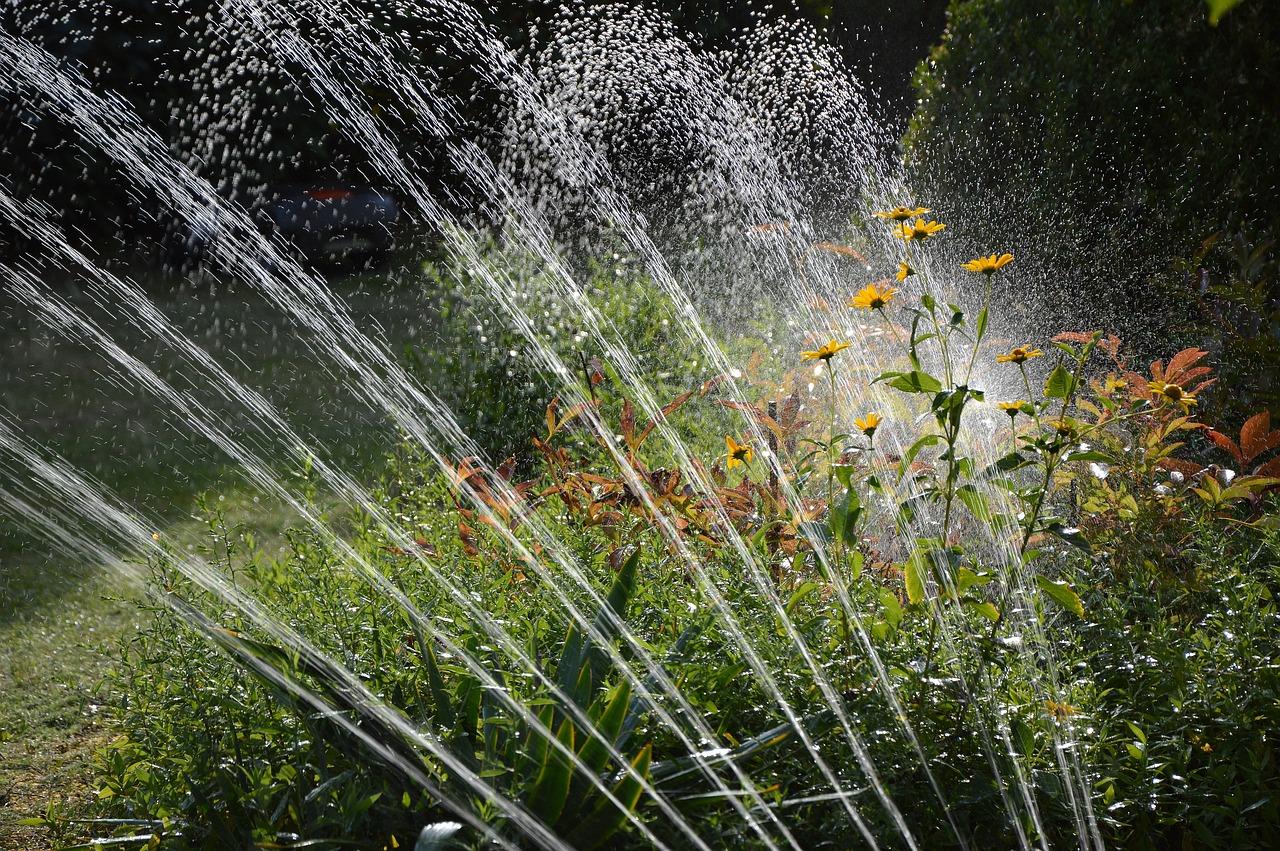 Garden Irrigation Water Sprinkler  - Peggychoucair / Pixabay