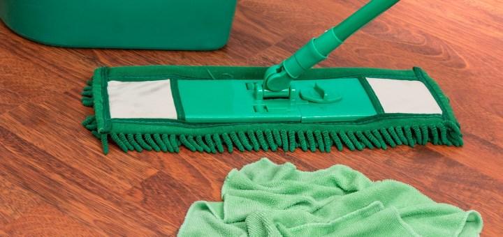 Mop Bucket Chores Housework Clean  - stevepb / Pixabay