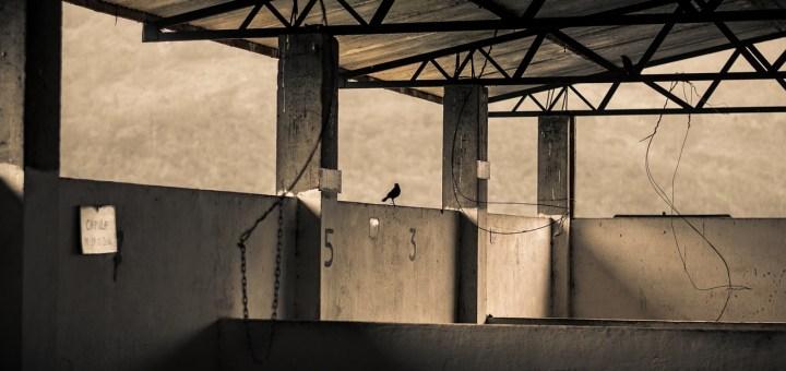 Warehouse Concrete Vacuum Industry  - yairventuraf / Pixabay