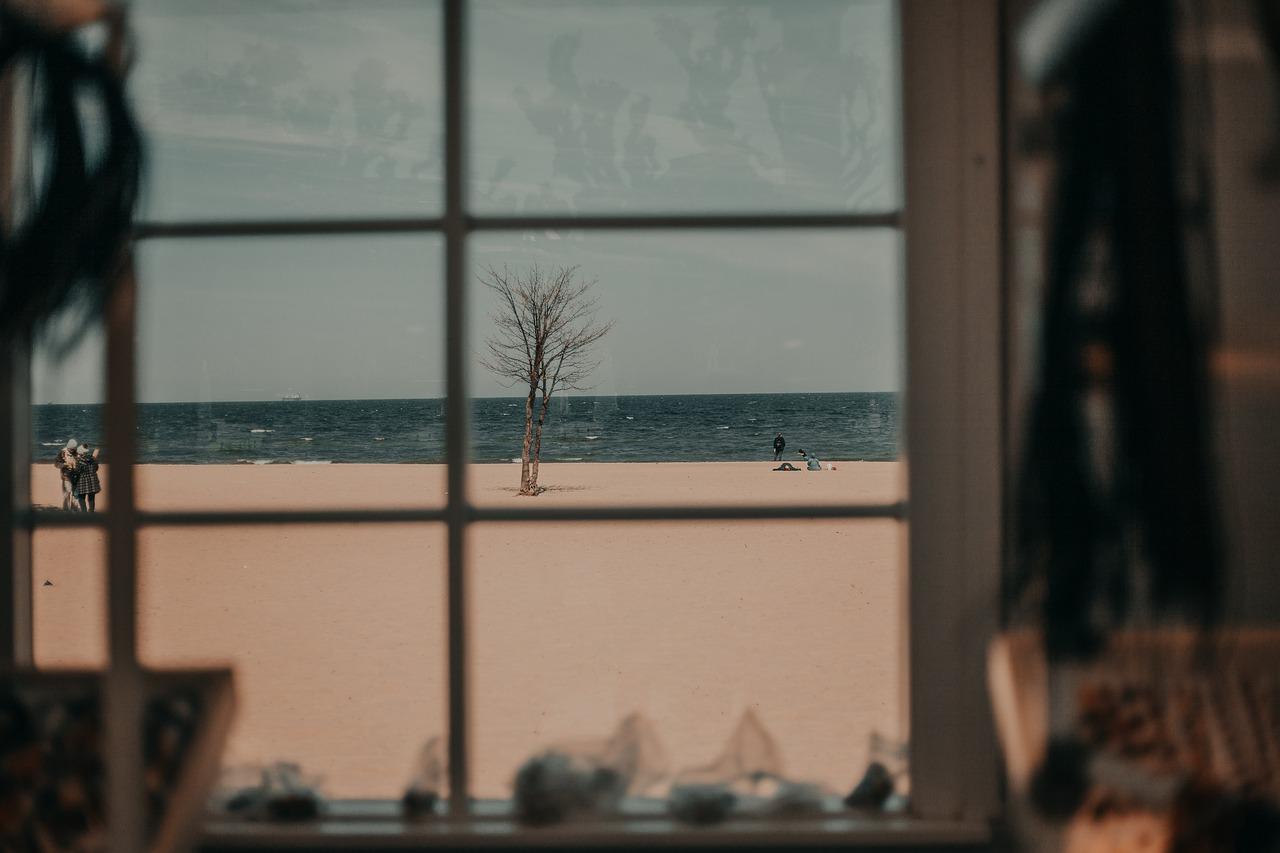 Window Beach Sea Tree Coast  - deni_eliash / Pixabay