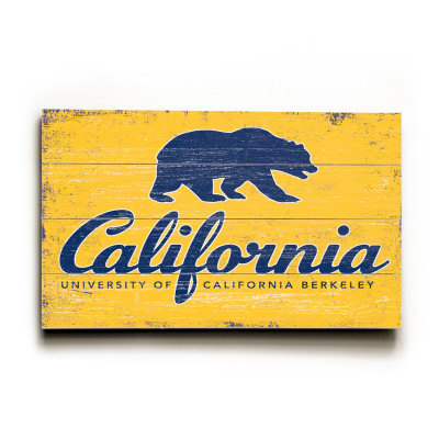 College Admissions Essay Help The University Of California Application Prompt