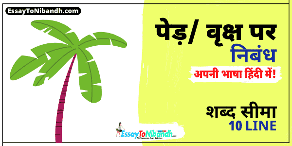 10 Lines On Importance Of Trees In Hindi