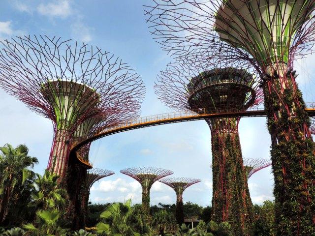O que fazer em Cingapura: Gardens By The Bay (Foto: Esse Mundo É Nosso)