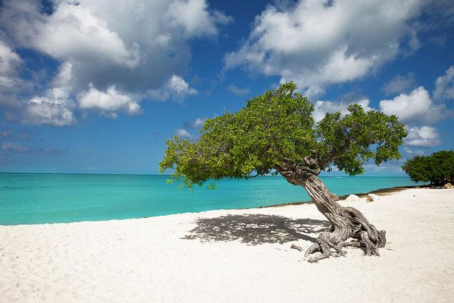 Praias de Aruba - Eagle Beach [Foto: Chris Ford (CC BY-NC 2.0)]