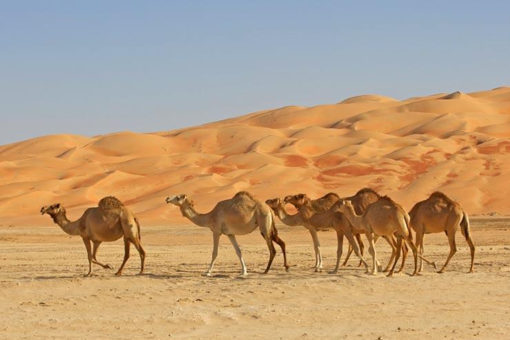 Cenários de Star Wars que existem de verdade - Abu Dhabi, Emirados Árabes Unidos (Foto via Shutterstock)