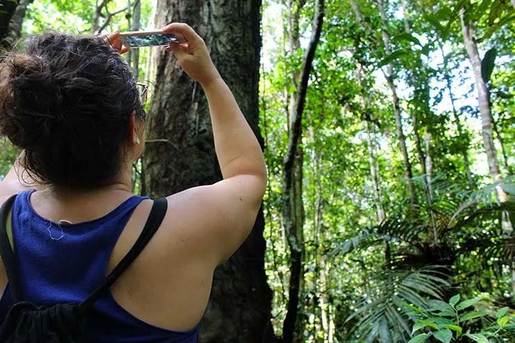 Como é um cruzeiro na Amazônia com o Iberostar Grand Amazon (Foto: Esse Mundo É Nosso)