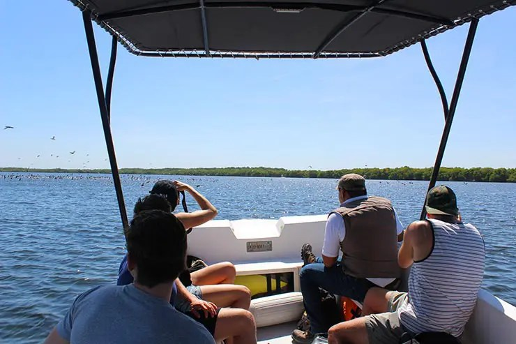 Dicas de Campeche, México: Los Petenes (Foto: Esse Mundo É Nosso)