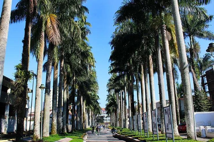 O que fazer em Joinville - Rua das Palmeiras (Foto: Esse Mundo É Nosso)