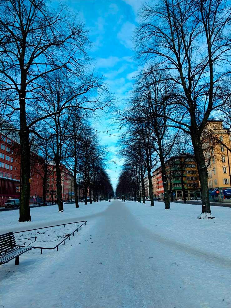 Dicas da Suécia (Foto: Henrique Bezerra)