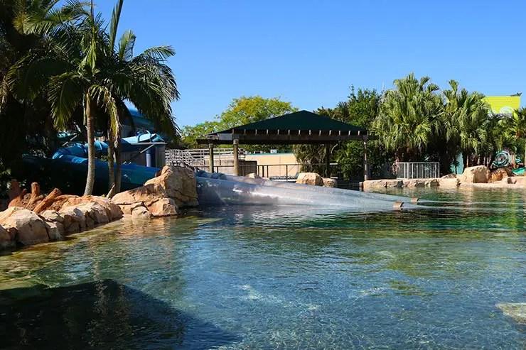 Aquatica Orlando (Foto: Esse Mundo é Nosso)