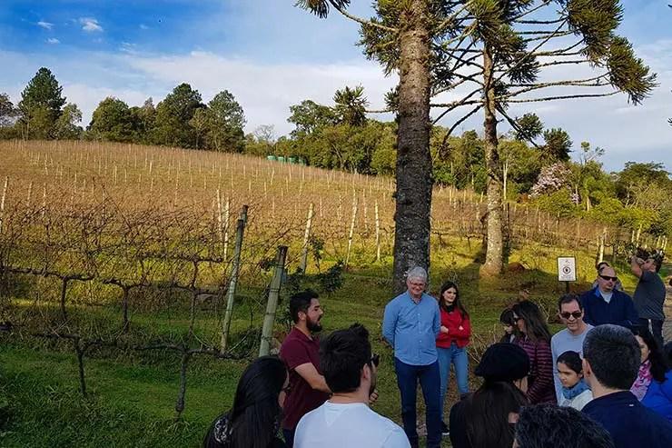 Vinícola em Gramado: Visita à Ravanello (Foto: Esse Mundo É Nosso)