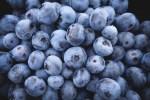 high antioxidant foods - blueberries
