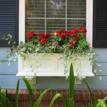 Woodoworking Window Box