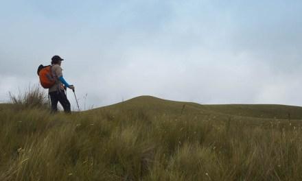 Review: Trekking poles