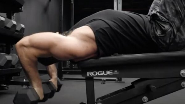 Back lats Exercises Dumbbells only
