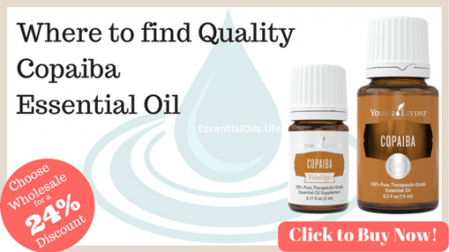 where do you buy copaiba essential oil