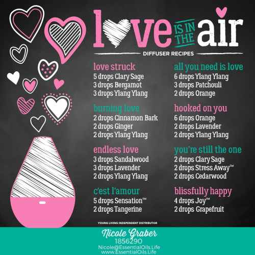 Essential oils are great to help facilitate love and romance. Here are a few DIY essential oil diffuser recipes for when love is in the air. Perfect for Valentines Day and date nights!