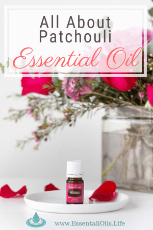 Looking for info about patchouli essential oil? This article has excellent information cultivated for you about what Patchouli is, favorite ways to use it, DIY diffuser recipes, and where to find quality patchouli essential oil to purchase for your oils collection