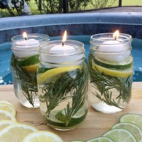 Essential Oil Insect Repellents